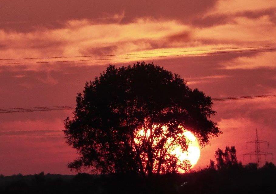 2015 A6 Sonnenuntergang 006