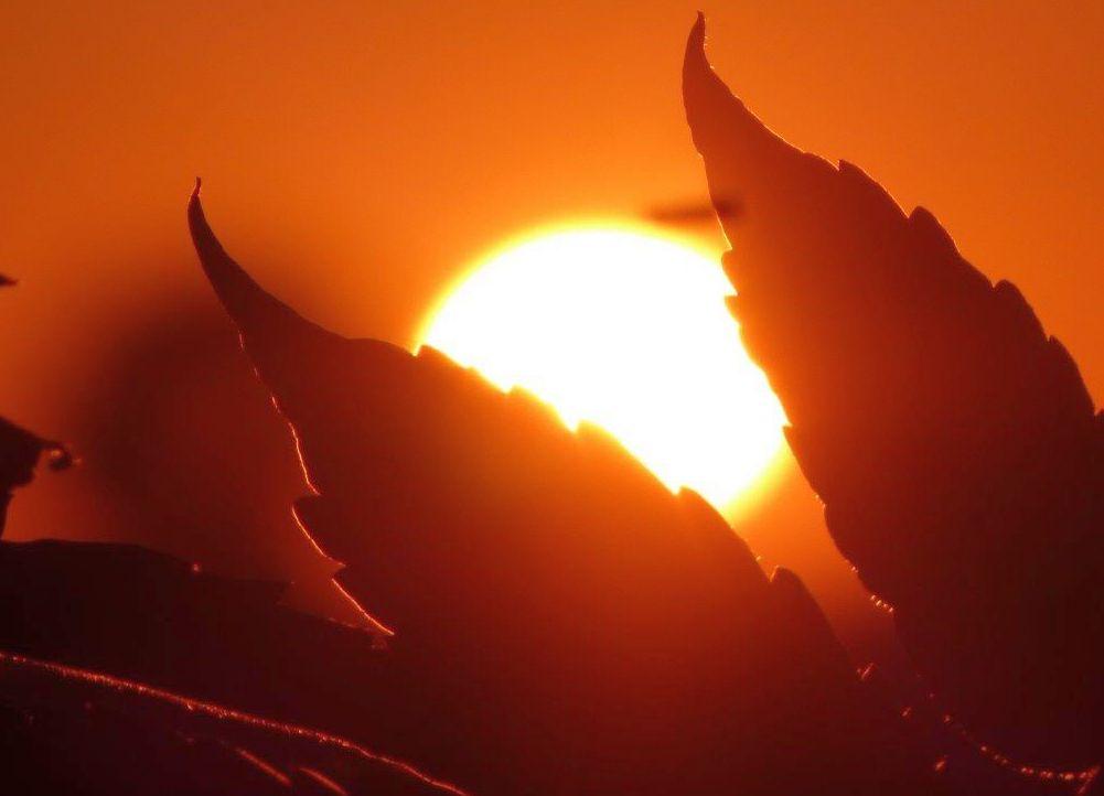 2015 A7 Sonnenuntergang 003