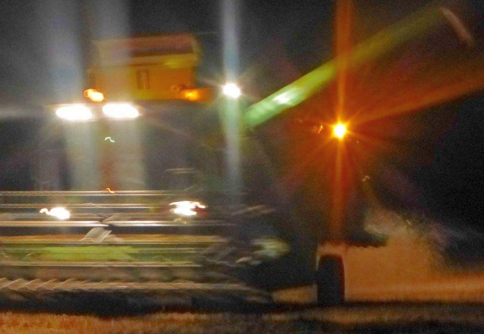 Ernte nachts, L392 BV 001