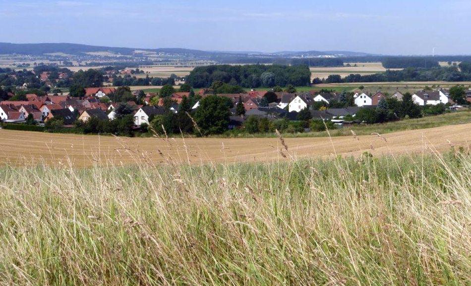 Weizenernte am Stemmer Berg 026