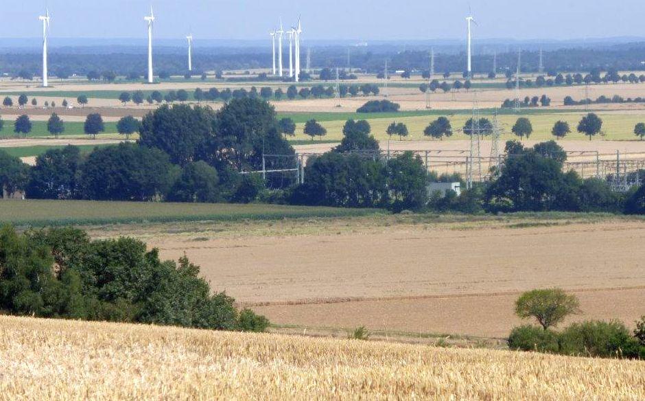 Weizenernte am Stemmer Berg 028