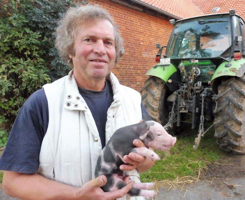 2015 A9 Freise Schweine 003