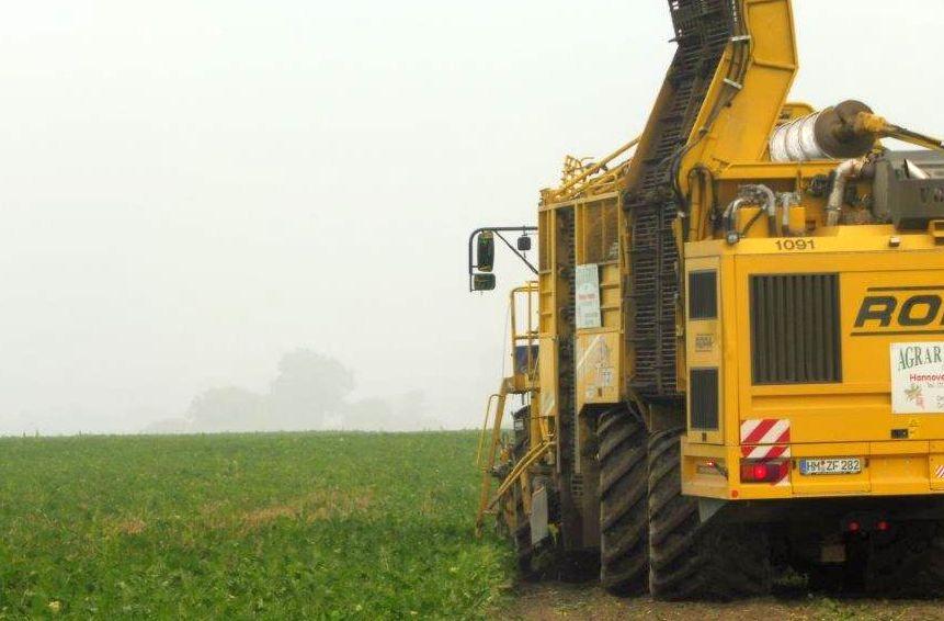 2015 M10 Ernte Zuckerrüben 027