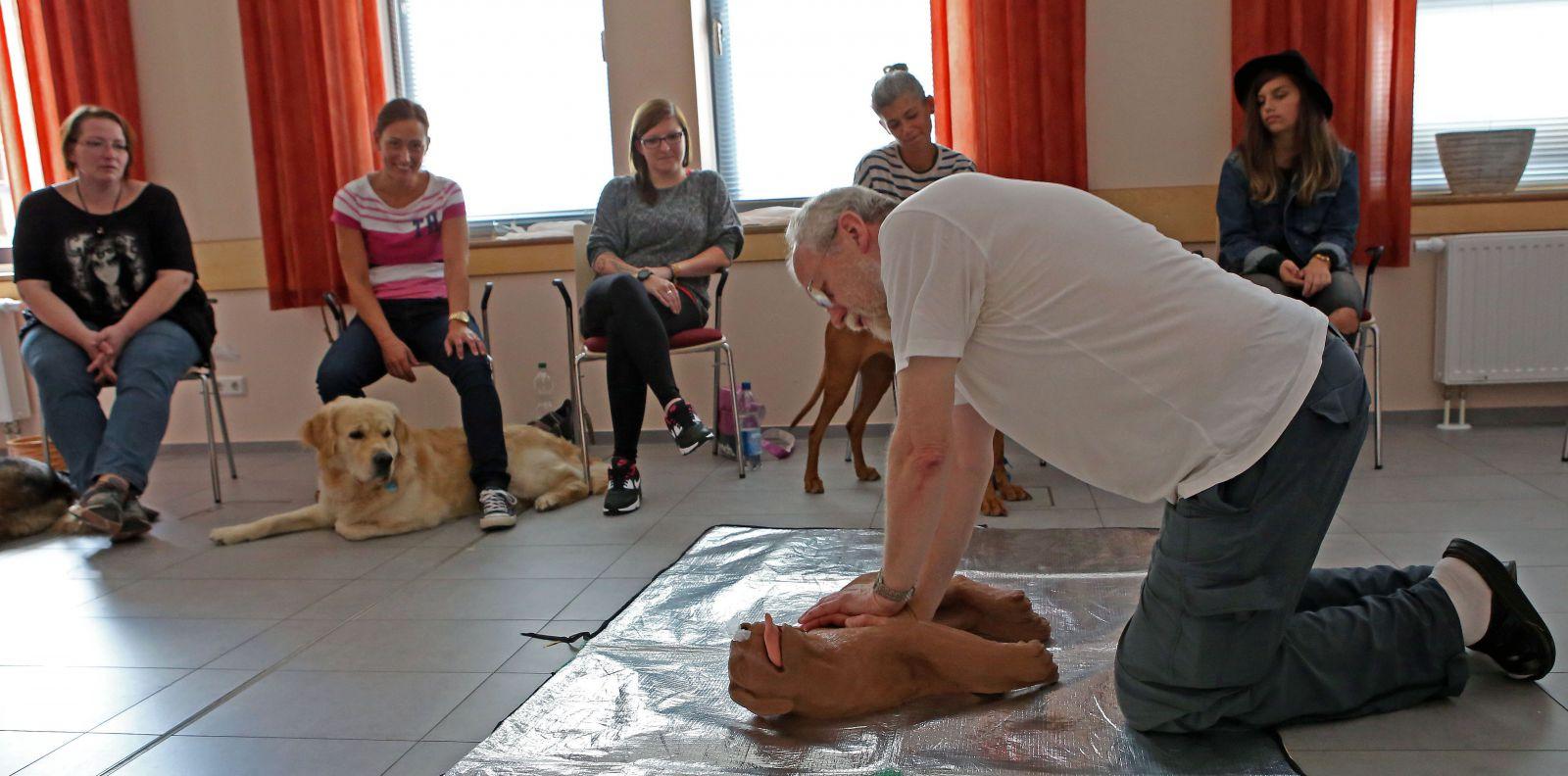 Erste Hilfe am Hund Kurspremiere Foto 02