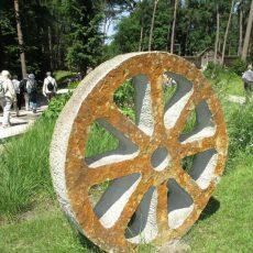 Gartenfreunde besuchen die Landesgartenschau in Bad Lippspringe