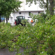 Wasserschäden und morsche Äste beschäftigen die Ortsfeuerwehr Barsinghausen