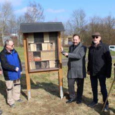 Neues Bienenhotel am Regenrückhaltebecken wartet auf summende Besucher