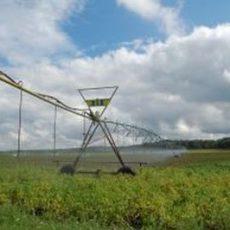 Sorgen der Ackerbauern werden infolge der anhaltenden Trockenheit immer größer