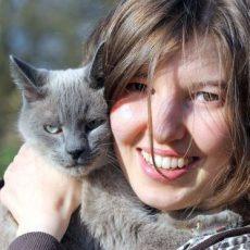 Tierschutzverein sucht Bundesfreiwilligendienstler/-in