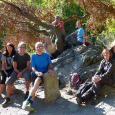 Naturfreunde erkunden auf Schusters Rappen das malerische Bodetal