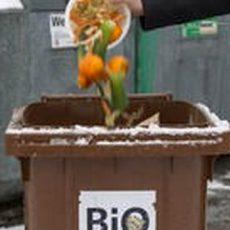 Biotonne: Tipps für die kalte Jahreszeit