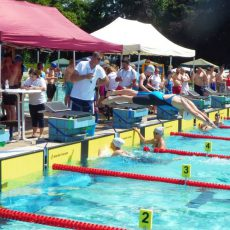 Schwimmerinnen aus Barsinghausen stellen bei den Landesmeisterschaften einen neuen Stadtrekord auf