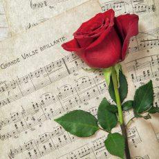 Romantisches Sommerkonzert vom Heimatchor Eckerde führt durch verschiedene Epochen