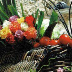 Wochenmarkt wird wegen Reformationstag vorverlegt
