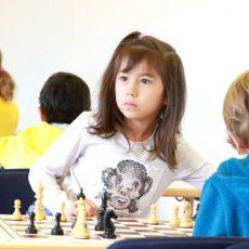 Schach: Yana und Dennis Amrhein aus Barsinghausen sind bei den Landesmeisterschaften erfolgreich