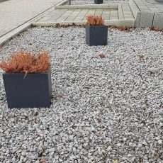 """Schottergärten"" sind in Niedersachsen rechtswidrig"