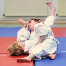 Judosportler des VSV Hohenbostel strahlen um die Wette