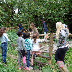 Kinder und Willkommenskreis erleben einen vergnüglichen Tag bei der Ökostation