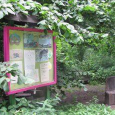 Öffnungszeiten der beiden Waldkindergärten sollen verlängert werden