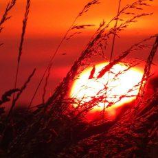 Am Deister: Sonnenuntergänge wie in den schönsten Urlaubsorten