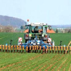 Pflanzenschutzmittel einsparen: Die mechanische Unkrautbekämpfung ist wieder in