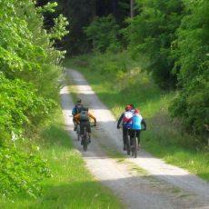 Mountainbiker vom ADFC bleiben auf den befestigten Deisterwegen