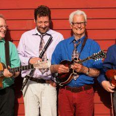 "Krawatte veranstaltet Irish Folk Night mit ""Matching Ties"""