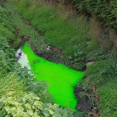 Grüne Färbung im Entwässerungsgraben ruft Feuerwehr und Polizei auf den Plan